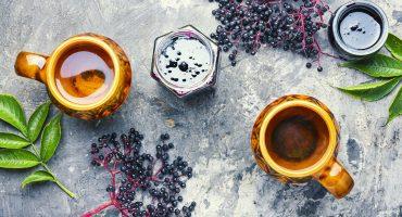 Elderberry for immune support