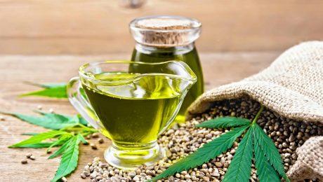 Premium hemp extract; oil hemp in sauceboat